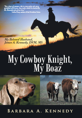 My Cowboy Knight, My Boaz