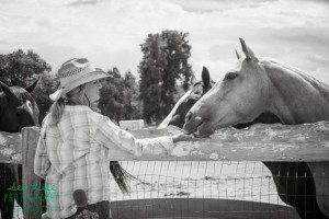 B and W me feeding 2 horses image